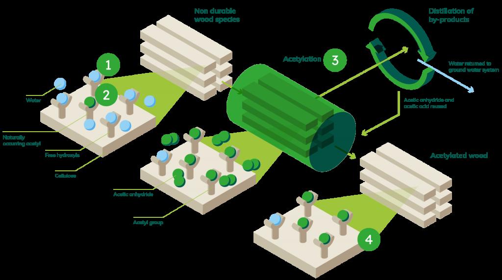 acetylation wood technology